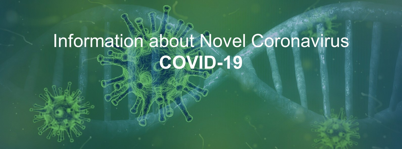 Information about Novel Coronavirus COVID-19
